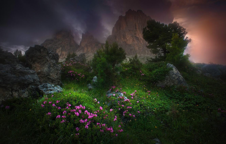 Обои тучи, цветы, Облака. Природа foto 6