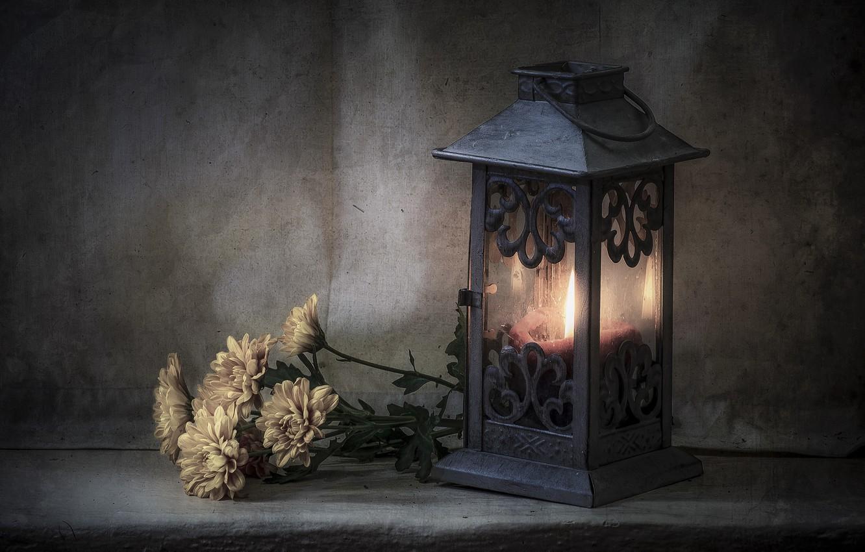 Фото обои цветы, стиль, свеча, фонарь, хризантемы