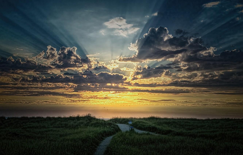 Фото обои лучи, утро, восход солнца