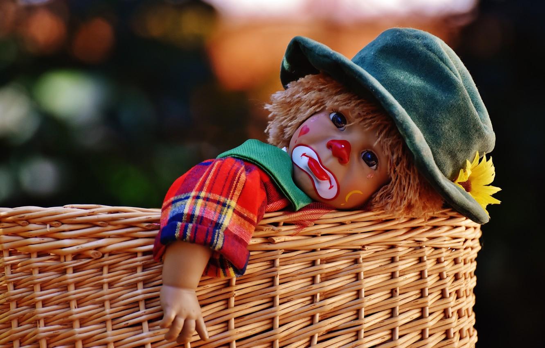 Фото обои цветок, корзина, игрушка, игра, кукла, клоун, слеза