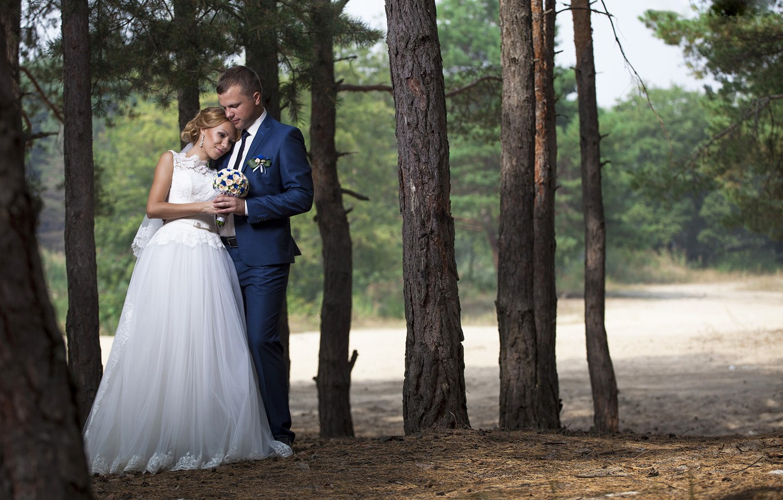 Фото обои лес, фото, букет, платье, невеста, красивые, свадьба, жених