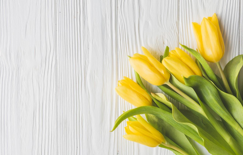 Фото обои цветы, букет, весна, желтые, тюльпаны, fresh, yellow, wood, flowers, tulips, spring