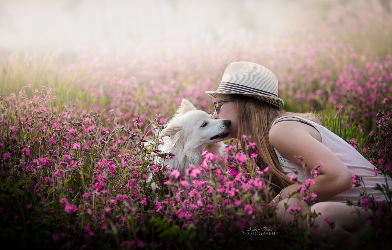 Фото обои девушка, цветы, собака, весна