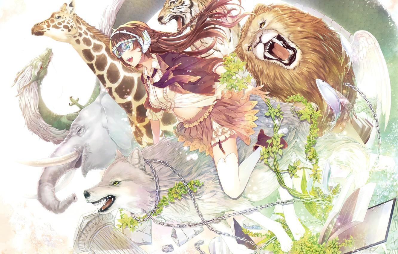 Фото обои животные, девушка, аниме