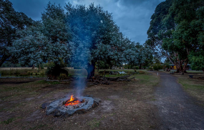 Фото обои деревья, парк, огонь, тропа, вечер, костер, Австралия, trees, Australia, parks, Bonfire, Halls Haven Resort
