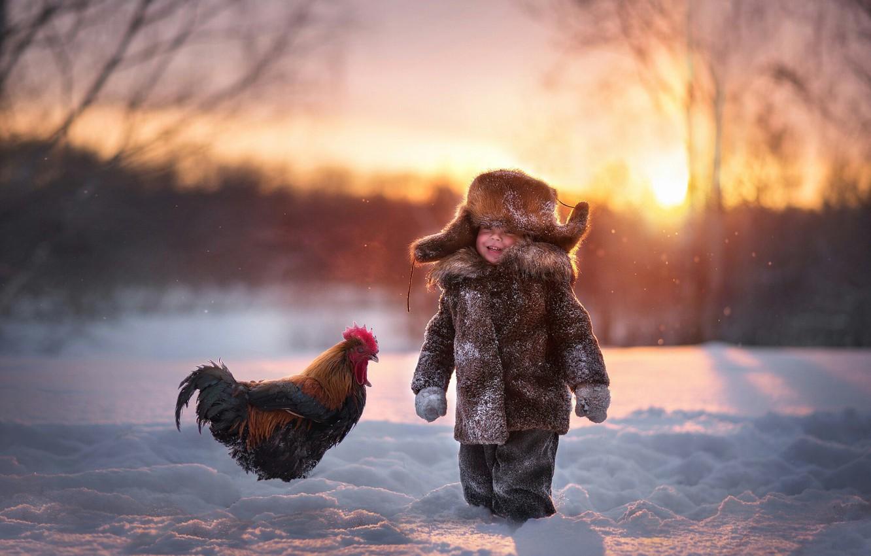 Фото обои зима, снег, радость, шапка, мальчик, петух