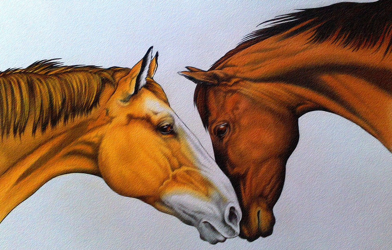 рисунки красивых лошадей картинки дразнит гаару тот