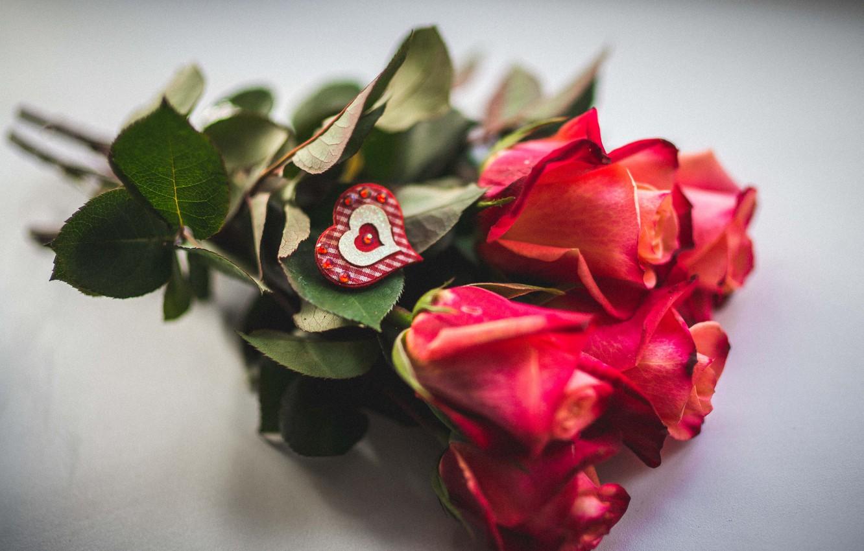 Картинки, картинки цветы с любовью женщине