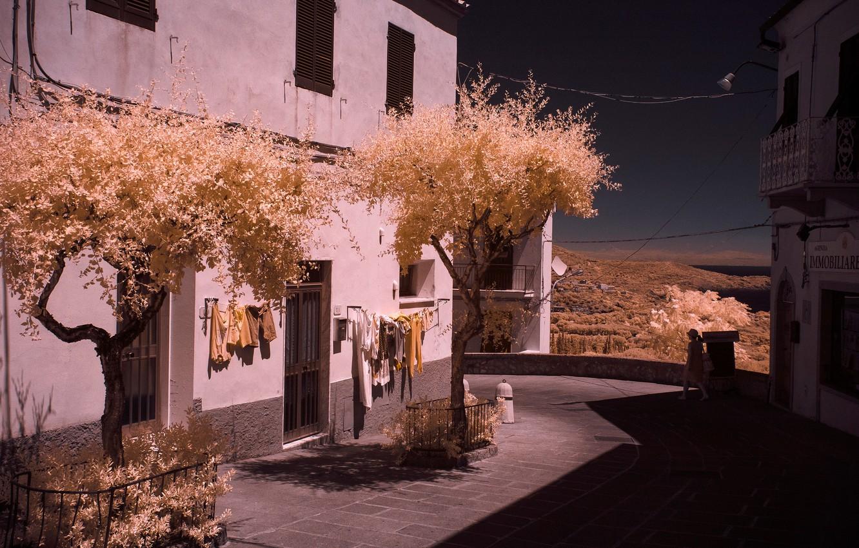 Фото обои деревья, дом, улица, Италия, Тоскана, Ливорно, остров Эльба, инфракрасный снимок, Каполивери