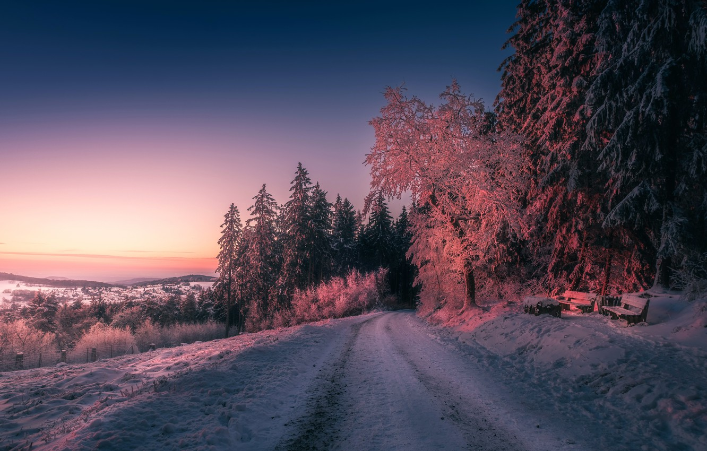 практично зимний вечер лес фото порчи