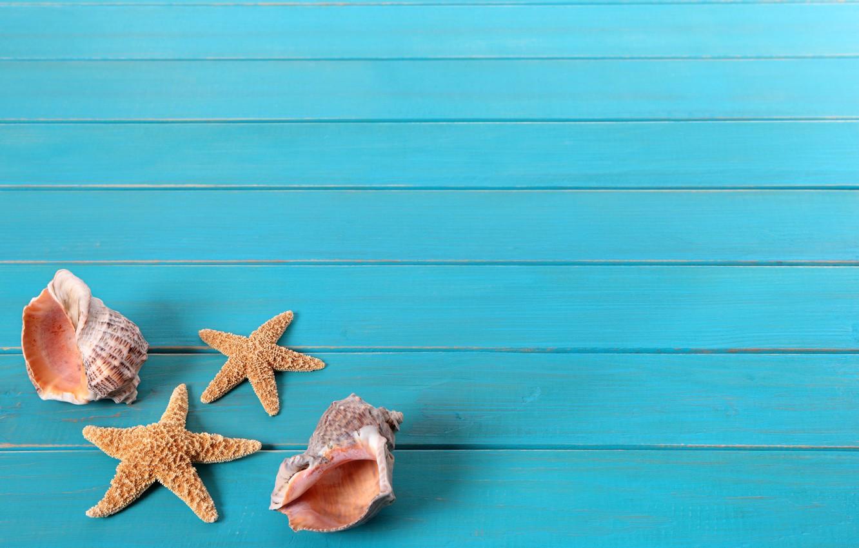 Обои ракушка, морская звезда. Разное foto 8