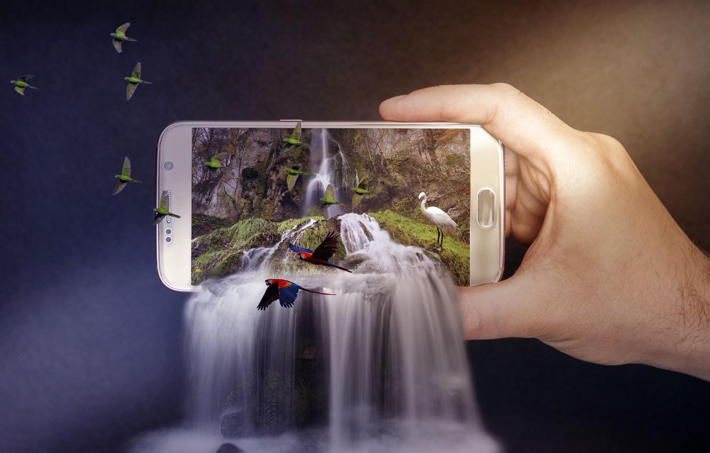 Фото обои птицы, природа, фон, фотошоп, водопад, рука, попугаи, каскад, цапля, смартфон