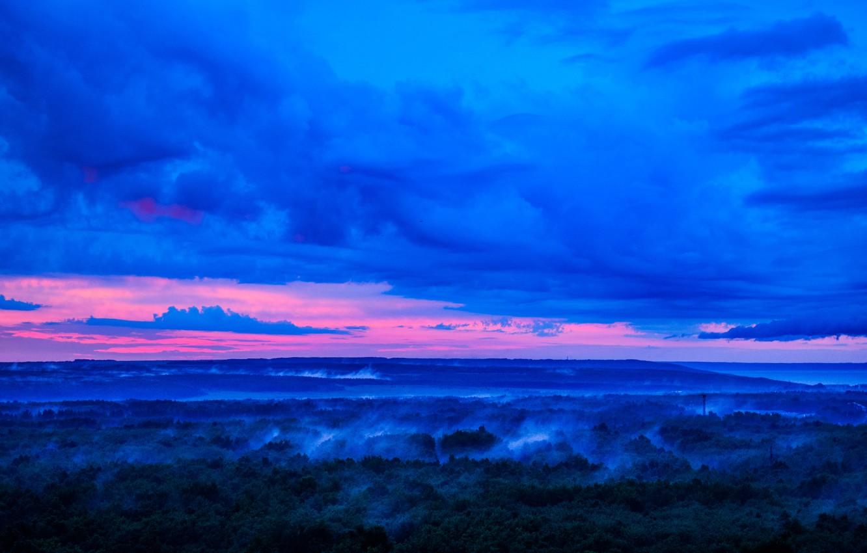 Фото обои лес, небо, розовый, после дождя