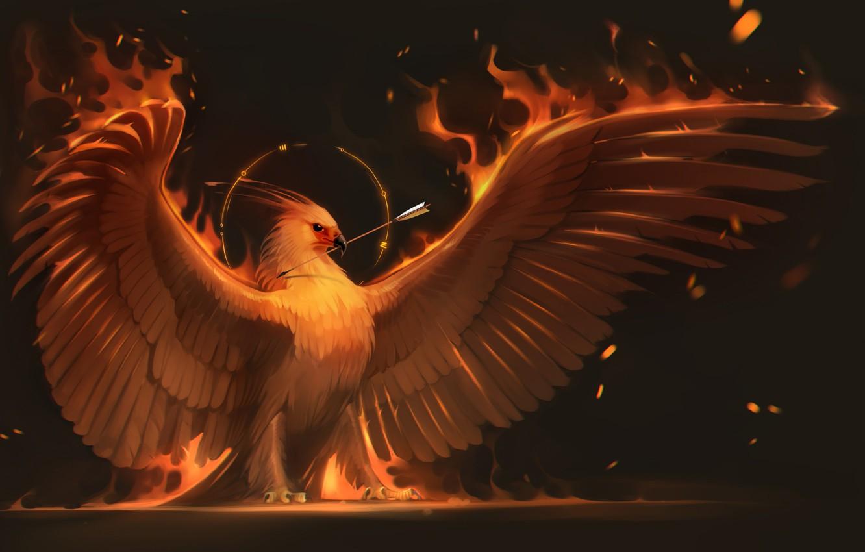 Обои крылья, феникс. Животные foto 6