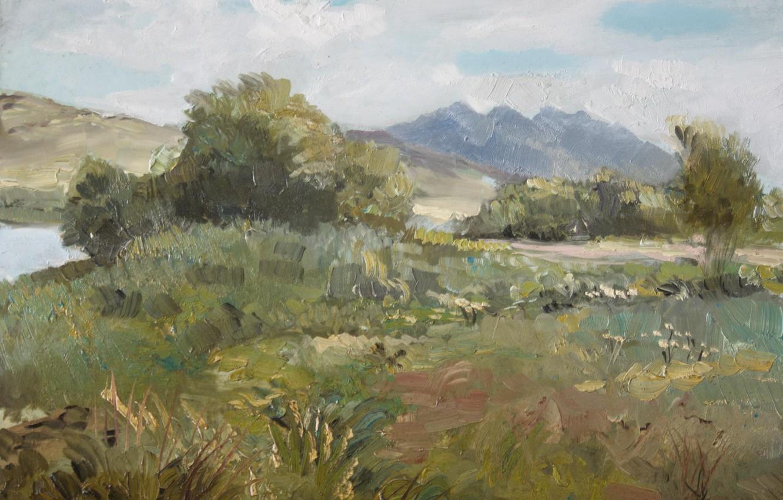 Фото обои пейзаж, куст, речка, сопки, 2008г, Айбек Бегалин, Спасск. У озера