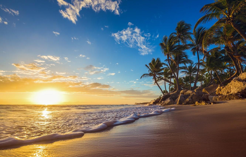 Фото обои море, волны, закат, природа, тропики, пальмы, побережье