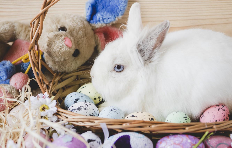 крепкий алкоголь, пасхальный кролик фото картинки желаю