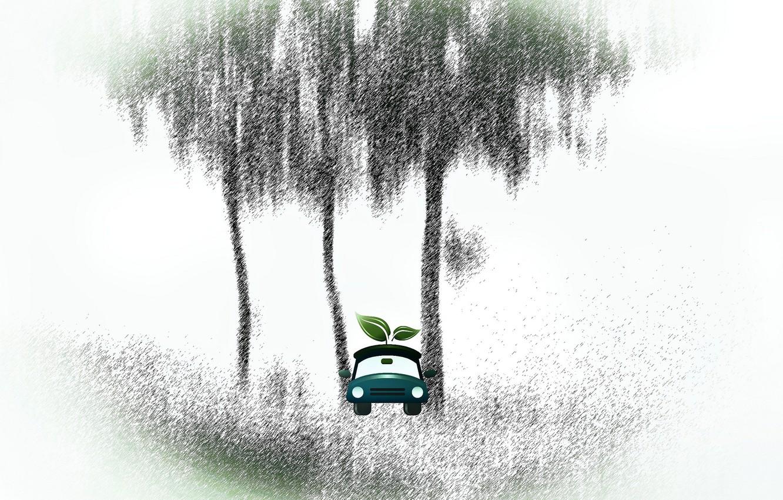 Фото обои машина, лист, дерево