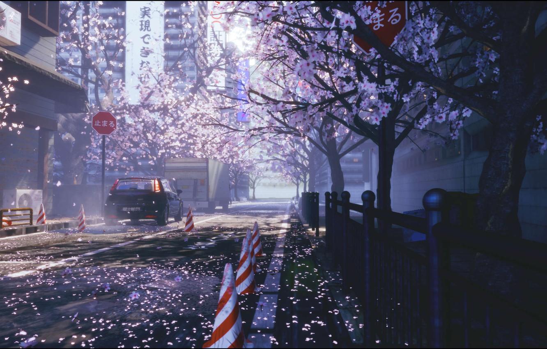 Фото обои авто, цветы, город, улица, весна, сакура
