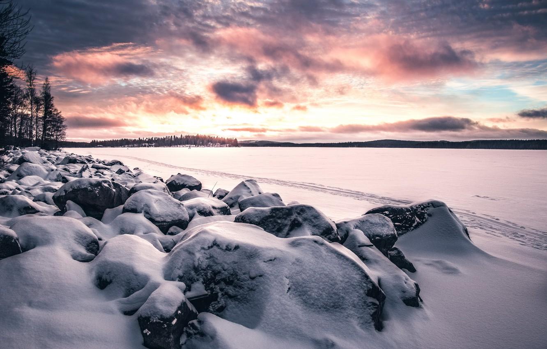 Фото обои зима, поле, снег, закат