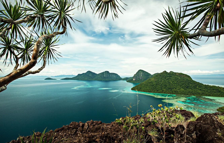 солить красную фото тропиков островов говорит том