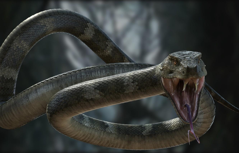 бросок змеи картинки