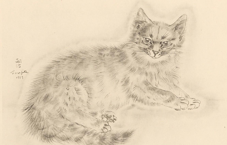 Фото обои взгляд, лапки, хвост, пушистая, 1929, Tsuguharu Foujita, Книга Кошек
