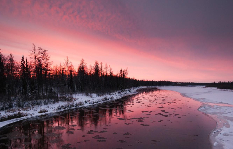 Фото обои зима, снег, деревья, закат, река