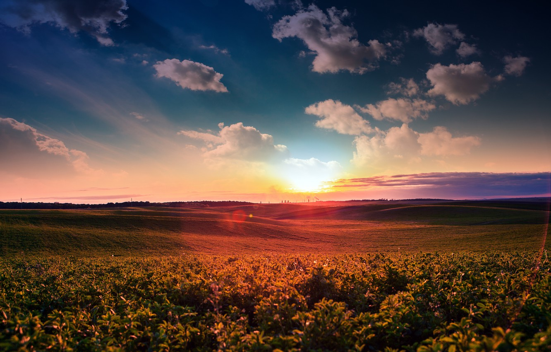 Фото обои зелень, поле, небо, солнце, облака, рассвет