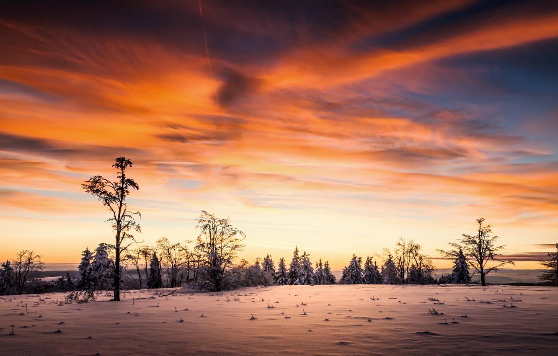 Фото обои зима, небо, закат