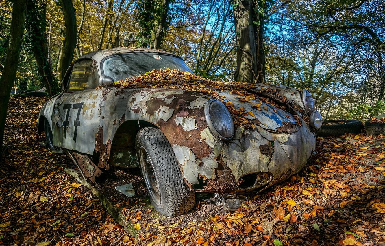 Фото обои машина, лес, листья, лом