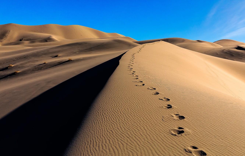 Фото обои песок, следы, пустыня, дюны