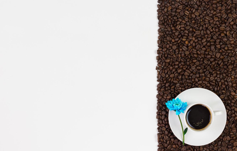 Фото обои цветы, кофе, зерна, love, flowers, cup, romantic, beans, coffee