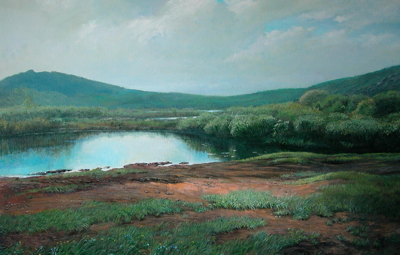 Фото обои пейзаж, Лето, 2008г, Каркаралинск, Айбек Бегалин