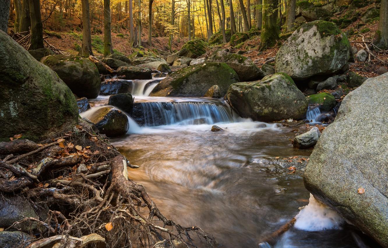 Фото обои осень, лес, вода, река, камни, водопад, hdr, река в горах, ulta hd, река в лесу