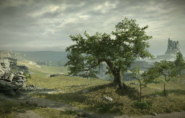 Фото обои дерево, скалы, вид, Shadow of the Colossus, В тени колосса, панормама