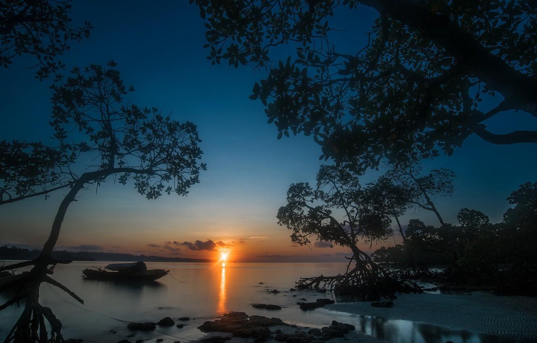 Фото обои море, деревья, закат, лодка, Индия, India, Андаманские острова, Бенгальский залив, Andaman Islands, Bay of Bengal, …