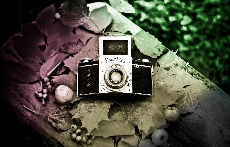 Фото обои фон, камера, Exakta
