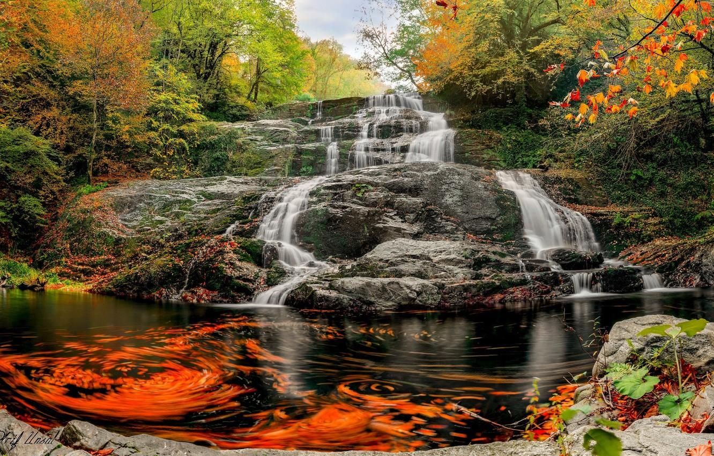 Фото обои осень, вода, скала, водопад, потоки