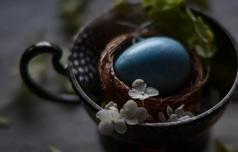 Фото обои Яйцо, Пасха, Праздник