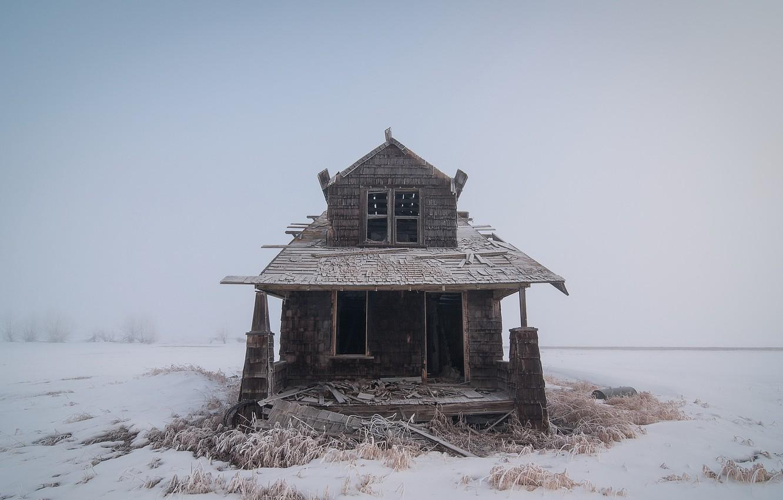 Фото обои зима, туман, дом