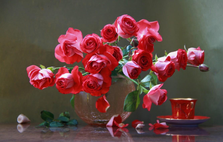 Фото обои цветы, розы, лепестки, чашка, ваза, ракушки, Наталья Кудрявцева