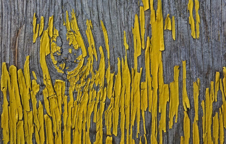 Фото обои фон, дерево, краска