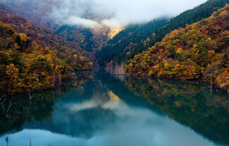 Фото обои forest, autumn, clouds, lake, mirror