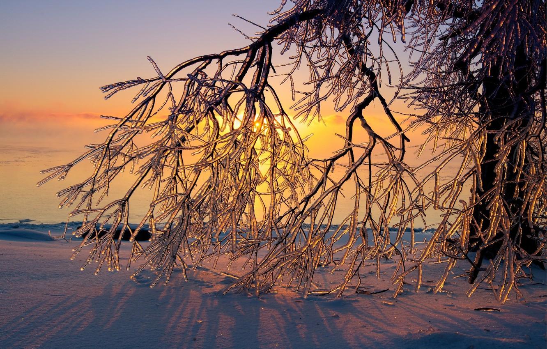 Фото обои зима, снег, закат, лёд