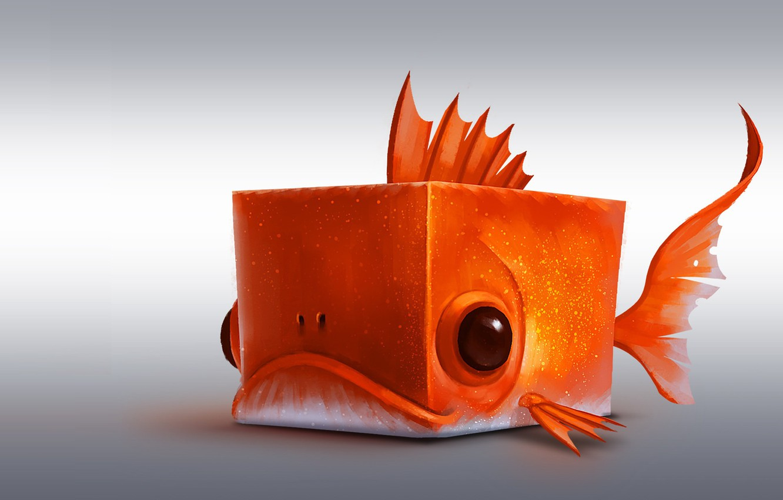 Фото обои рыбка, арт, кубик, квадрат, Red fish Cube, romain flamand