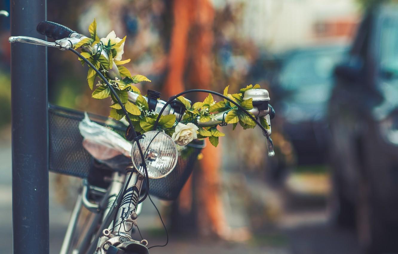 Фото обои цветы, велосипед, город, улица, корзина, фара, фонарь, bicycle