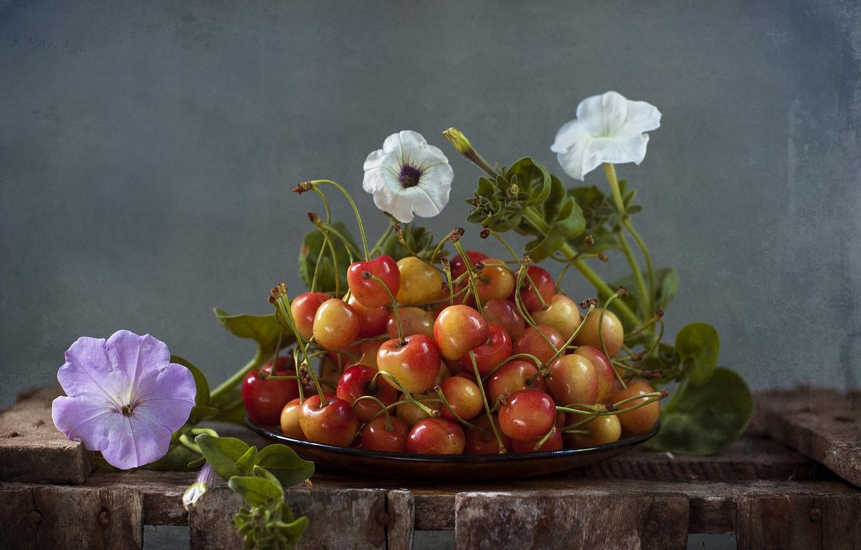 художественные фотографии фруктов цветов является самоплодным, ягоды