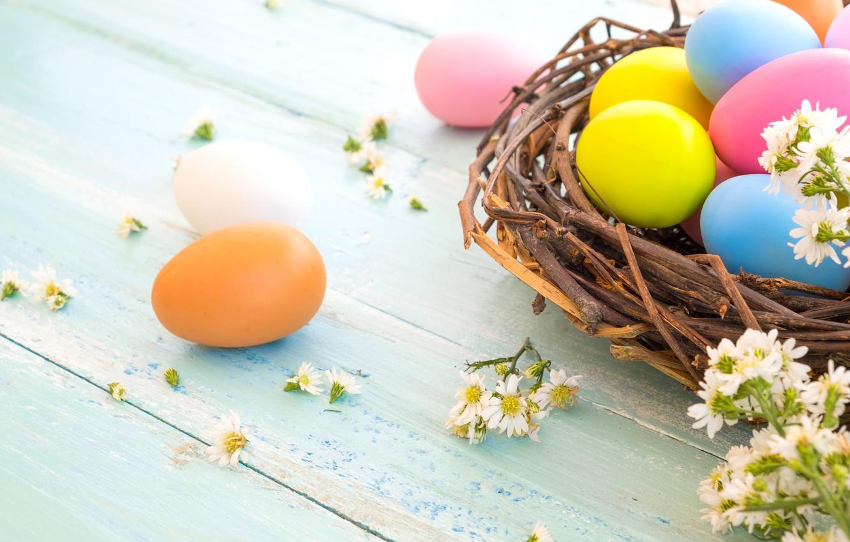 Фото обои цветы, корзина, яйца, весна, colorful, Пасха, wood, pink, flowers, spring, Easter, eggs, decoration, Happy, tender