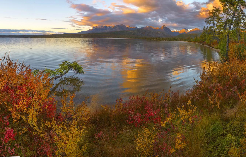 Фото обои осень, деревья, горы, озеро, Россия, кусты, Владимир Рябков, Магаданская область, Озеро Джека Лондона, Колыма